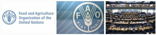 FAO Agriculture and Forestry